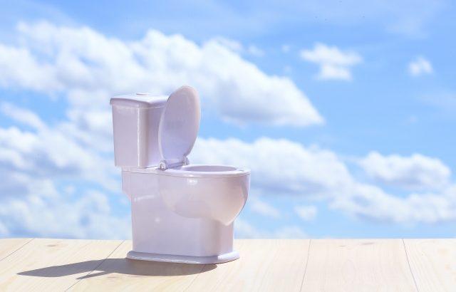 3歳児クラスに入る時に準備しておくべき5つのこととは?【その2~トイレで排尿・排便を出来るようになるには?】